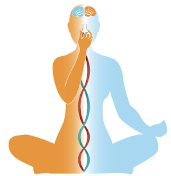 Calming Breathing Exercises Marblehead School Of Raja Yoga